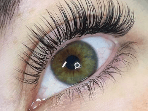 Individual Eyelash Extensions - Virtual Classroom Beauty Course